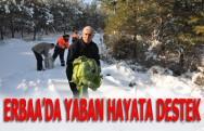 Erbaa'da Yaban Hayata Destek
